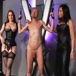 The accidental gardener1  the gardener is restrained to a st andrews cross for weighted cbt and genitorture. The gardener is restrained to a St Andrews cross for weighted CBT and genitorture